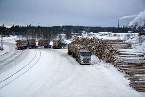 Den 30 meter långa timmerbilen som tar fyra travar timmer testkörs sedan förra året på en dispenssträcka i Norrbotten.