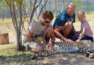 Sonja och Marcus klappar en gepard i Sydafrika.