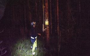 I Bjurfors pågick arbetet på kvällen med att öppna en frånskiljare. Foto: Niklas Hagman