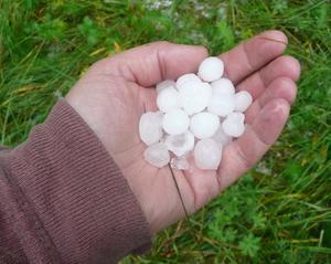 Det föll även hagel på Degersjöberget mellan Junsele och Grundtjärn i dag, meddelar läsaren Katrin Fängström.