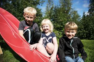 Benjamin Viik, Ellen Östman och Svante Hallberg börjar förskoleklass i höst.
