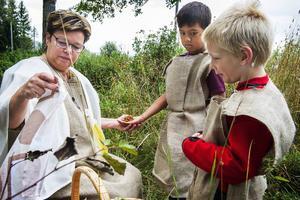 Trollkvinnan hjälpte alla som behövde med läkande örter och helande ramsor.