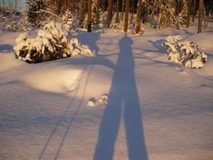 Här har Jonas fångat sin egen skugga i skidspåret, Spikbodarna, Östersund jan.09