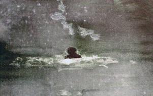 ... balanserar fint mot forne eleven Magnus Bergs meditativa bilder på Remi.