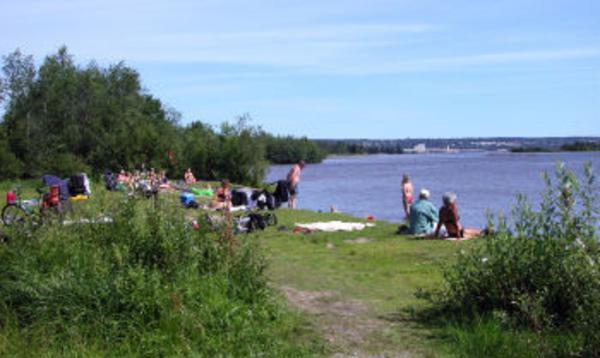 Badklådan har infunnit sig i Timrå och rapporteras från flera badpltser efter kusten, som exempelvis vid Grunna i Fagervik.