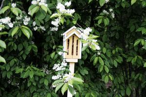 Fjärilsholken är en av flera i olika modeller, som lockar insekter till Britt och Henning Åströms trädgård utanför Hudiksvall.