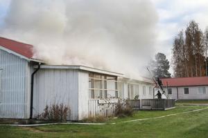 Inga personer skadades i branden. En katt och en hund räddades ur en av bostäderna.