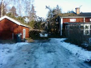 Blåsigt julväder i Stråtenbo.