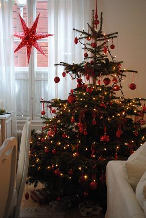 Julgranen i vårt hus ska vara stor med många ljus och röda julgranskulor.
