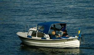 Elmotorer bullrar inte och lämpar sig därför utmärkt för en stilla tur på sjön.