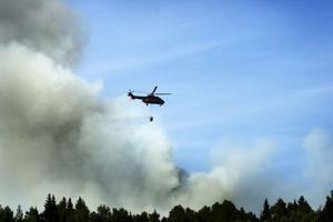 Just nu råder det ökad risk för skogsbrand i hela Västernorrland.