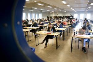 En förutsättning för att kunna studera på Högskolan i Gävle är att man har någonstan att bo.