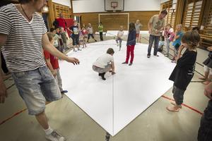 Från början var arket 12x12 meter.