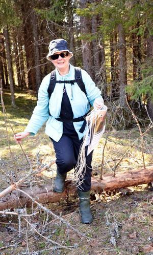 Vandringslust. Friluftsfrämjandet jobbar för att få fart i sin verksamhet och Kerstin Nyström är en av de drivande krafterna.