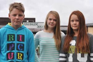 Johannes Fjällgren, Tova Thomasson och Signe Rensberg vill ha undervisning i sydsamiska nu.