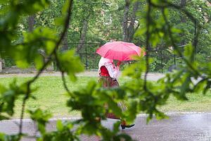 Tack och hej. Regnskuren skrämde bort många, till och med dem som var uppklädda särskilt för denna dag.
