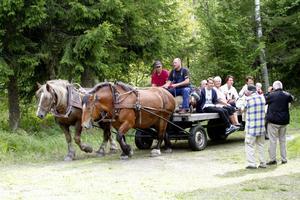 Besökarna kom till fots - eller som här, via hästskjuts.