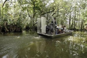 Träskmarkerna i Everglades, Florida - här färdas Ava Bigtree.