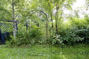 Grönt, jo visst men det är knappast så här en trädgård ska se ut.