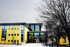 20 studenter vid Mittuniversitetet fälldes för fusk undner 2013.