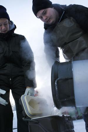 Sebastian Tångring och Rasmus Hjelm häller upp varmt vatten i ett isoleringskärl.