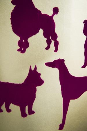 4I den övre prisklassen finner du sammetslena hundar i svart eller lila. Tapeten kommer från Osborn & Little, priset är 1525 kronor rullen.
