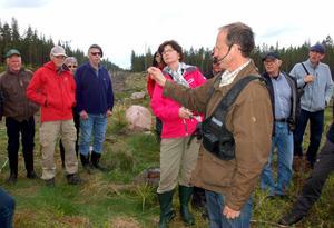 Krister Karlsson visar vad som återstår av en planta som angripits av snytbagge.
