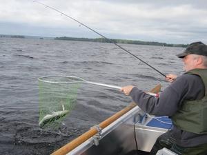 Benny Lundin gläds åt det allt bättre fisket i Hamrångefjärden. Några gösar och fina abborrar är vanliga fångster numera i Hamrångefjärden.
