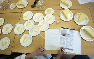 Åtta vanliga prästostar från svenska butikshyllor smaktestades av en tränad sensorisk panel. Paneldeltagarna fick inte veta vilken ost som var vilken. Foto: Anna Sigge
