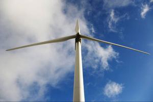 Goda vindkraftslägen skänks bort menar skribenten.