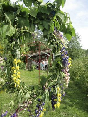 Vid fikapausen sjöng vi glada sommarsånger. Foto: A Edlund