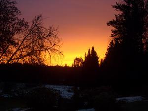 Morgonsol genom sovrumsfönstret. Taget i Oktober-09.