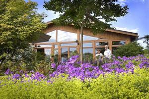 Thomas och Anna Lisa Julin har omsorgsfullt skapat sig en trädgård att trivas i.