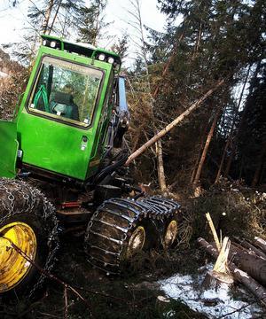 Det har varit full fart för Norrskog i år. Industridelen Norrskog Wood Products, NWP, har satt nytt produktionsrekord.
