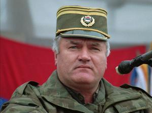 Oskyldiga. I juli 1995 mördades över 8 000 bosnienmuslimska pojkar och män i Srebrenica. Bakom dödandet stod bosnienserbiska soldater, under ledning av överbefälhavare Ratko Mladic. På torsdagen greps Mladic, han kommer nu att ställas inför rätta krigsförbrytartribunalen i Haag.