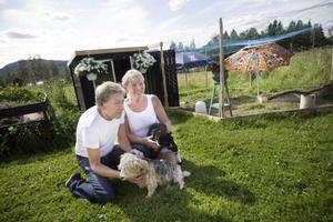 Ewamay Johansson och hennes sambo Benny Liljeberg sitter på gräsmattan med hunden, Kajsa och katten Zorro och tittar på hönsen.