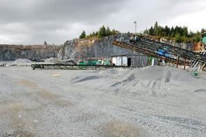 Sedan konkursen har det inte hänt något vid anläggningen i Kroktorp, men nu hoppas Gunnars Börjel att få börja krossa berg igen.