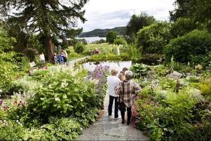 Paret Boije hade fullt med besökare i sin hemliga trädgård under hela söndagen.