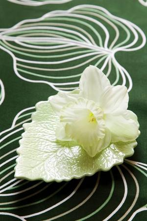 En narciss på ett fat vid varje kuvert blir en fin och enkel bordsdekoration. Den vita påskliljan heter Mount Hood.