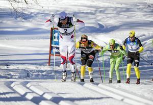 Daniel Tynell har vunnit Vasaloppet tre gånger. Nu är han sportchef för det mer än dubbelt så långa Nordenskiöldsloppet.