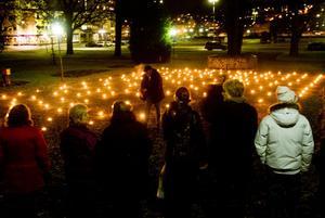 201 man har dömts för att ha mördat sina fruar eller sambors under 2000-talet. Lika många ljus tändes i Stadsparken under söndagskvällen.