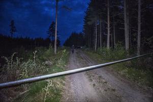 Polisen spärrade av ett stort område i skogen under kvällen.