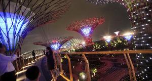 Singapores nya superpark om kvällen.