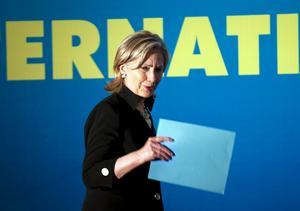 Konfunderad? USA:s utrikesminister Hillary Clinton kommer att bli konfunderad om hon bryr sig om att läsa vilken politik De rödgröna i det lilla Sverige har enats om. Arkivbild: Paul J. Richards/Scanpix-AP