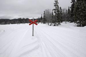 Föreningen hoppas kunna ha en skoterled som sträcker sig mellan Ytterhogdal, Ramsjö och Naggen, samtidigt som det ska finnas lokala leder med tillhörande karta.