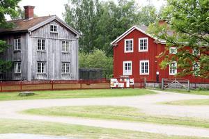 Onsdagar och torsdagar blir de stora aktivitetsdagarna vid Träslottet i Arbrå i sommar. Tre fredagar blir det också på konserter.