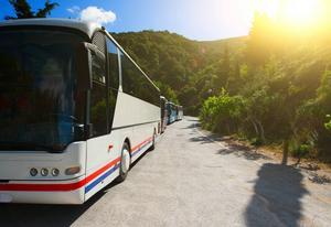 Moderna bussresor inbegriper även flyg. Då får man mer tid att utforska den utvalda destinationen.   Foto: Shutterstock.com