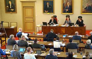 Sverigedemokraterna har blivit allt färre i kommunfullmäktige i Borlänge.