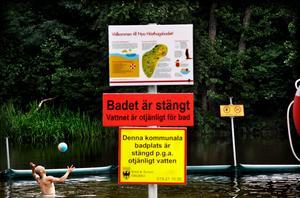 Det gjordes ett försök med en inhägnad bassäng vid Hästhagen för några år sedan, något som misslyckades.