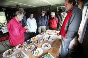 Maj Johansson är en erfaren svampplockare och delade på söndagen med sig av sina kunskaper på Ersk-Matsgården.